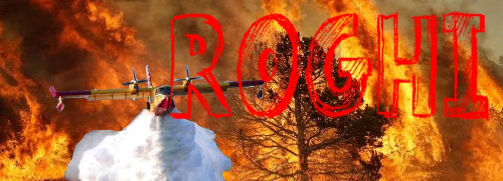 A fuoco. Perché torna il fuoco nei nostri boschi?
